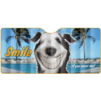 CAR WINDSCREEN SUN SHADE SMILE IF YOU WANT ME 145CM