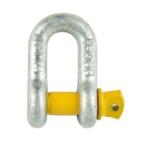 D SHACKLE 12MM 2T RATED YELLOW